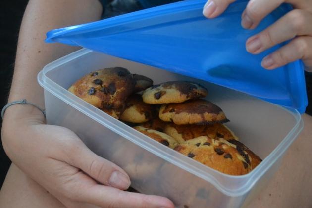 sumbitches cookies himym