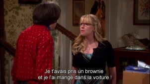 brownie bernadette the big bang theory